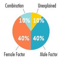 Male&FemaleFert
